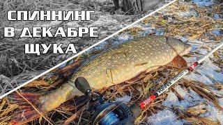 Рыбалка на щуку май 2020 в твери