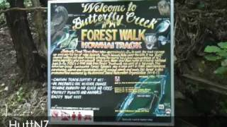 preview picture of video 'Butterfly Creek Walk'