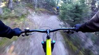 Northside ~ Wheeler Peak Trail