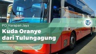 Bus Harapan Jaya, Perusahaan Otobus dari Tulungagung