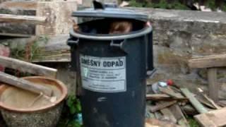 Šuny - směšný odpad