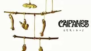Caifanes - Heridos