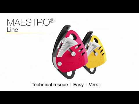 Descender - Maestro S