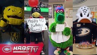 Mascots Wish Youppi! A Happy 40th Birthday
