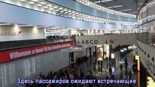 Аэропорт Вена, проезд до центра Вены, экскурсовод в Вене