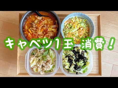 , title : '【簡単作り置き#17】キャベツひと玉使い切り、一人暮らし料理