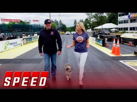 Walk 1000 feet with Scott Palmer, and his dogs | 2018 NHRA DRAG RACING