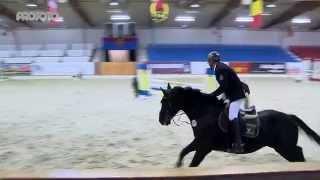 Vechta Hallenchampionat 2015 Prüfung 17 Sieger