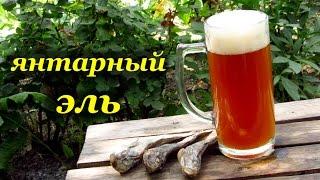 Рецепт домашнего пива - Янтарный Эль