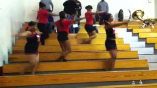 MHS Drill Team dancing to Suck It