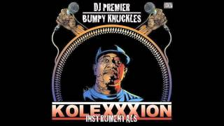 DJ Premier & Bumpy Knuckles - Shake The Room (Instrumental)