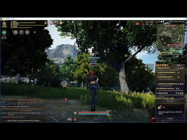 How to Get Wild Beehives for a Chandelier – Black Desert Online (BDO)