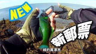 興趣使然釣魚人VS恆春墾丁祕點發現~台湾釣り TAIWAN
