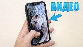 Ставим видео на экран блокировки iPhone! Скрытая функция iPhone! Кастомизация iPhone!