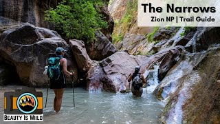 The Narrows | Zion National Park | Pre-Covid and Current Rules - What You Need to Know