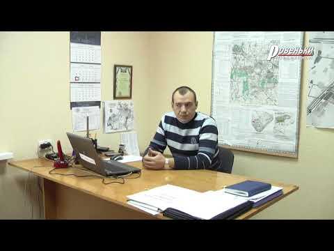 Д. Русаков: об удаление аварийных деревьев