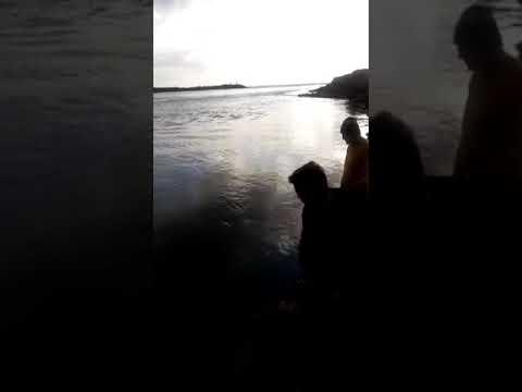 Robalo em Balneário Barra do Sul SC