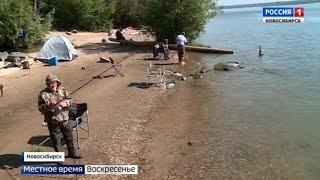 Клев рыбы в завьялово новосибирская область
