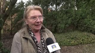 TV Budakalász / Budakalász Ma / 2020.02.19.
