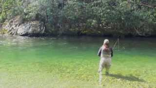 Fly Fishing the Blue Quill Hatch in the Great Smoky Mountains