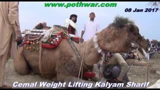 Cemal weight lifting Kalyam Sharif 08 Jan 2017
