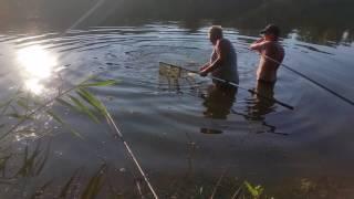 Рыбалка на реке северский донец в июне