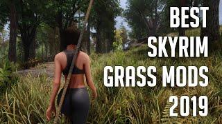 Skyrim SE: Best Grass Mods 2019