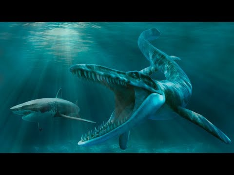 SCARIEST Ancient Sea MONSTERS That Ever Lived!