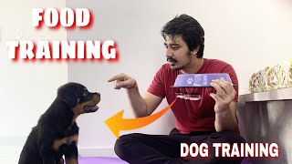 HOW TO TRAIN YOUR PUPPY FOR FOOD DISCIPLINE | 3 MONTHS OLD ROTTWEILER PUPPY TRAINING | DOG TRAINING