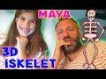 Maya' nın 3D İskeleti Bizi Yordu   Bizim Aile