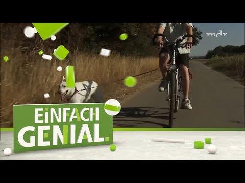 Konstruktion fürs Fahrrad erleichtert Ausflug mit Hund | Einfach genial | MDR