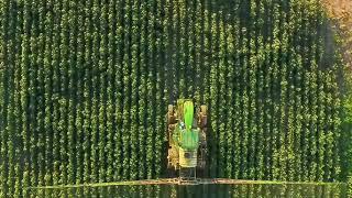 O Agronegócio no Nordeste cresce com a política de irrigação