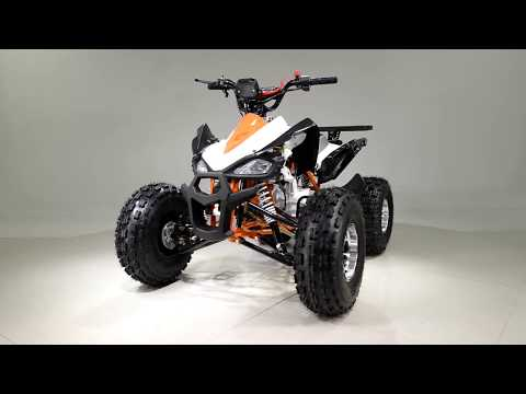 2019 Taotao USA Cheetah 120 in Dearborn Heights, Michigan - Video 1