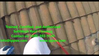 Certified SoftWash Roof Cleaning in Los Altos, CA