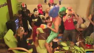 preview picture of video 'Harlem Shake (while Babysitting our friends' house in St. Pölten!)'