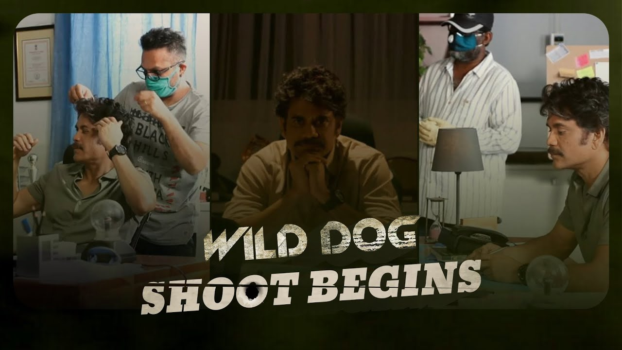 Wild Dog Shoot Begins