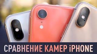 iPhone X, XR, XS - какая камера лучше и что выбрать?