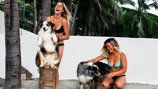 Female Travel Couple Crosses Mexico Border SOLO with 2 Dogs | Van Life