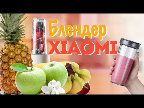 Обзор блендера Xiaomi Pinlo Little Monster Food Machine