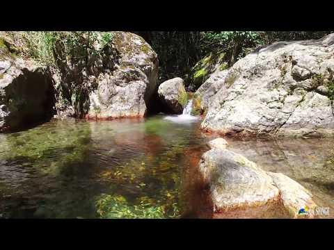 Camping La Sfinge - Cinque Terre