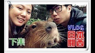 【Annie】Kansai★Vlog of Japan [2]- Capybara in hot spring! mysterious Shoebill? (with YouTubers)