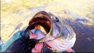 Top 11 Craziest Fishing Moments!! - Video Youtube