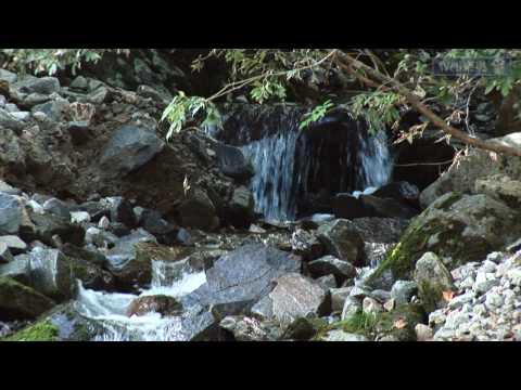 اليابان وجمال الطبيعة 5