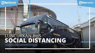 Luncurkan Bus Social Distancing, PO Putera Mulya Layani Trayek Jakarta-Malang