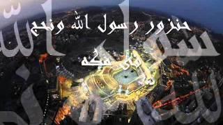 وائل جسار-يا طالع الشجره