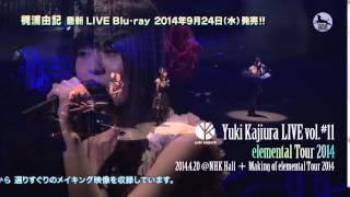 Yuki Kajiura LIVE Vol.#11 Elemental Tour 2014 04.20@NHK HALL ダイジェスト