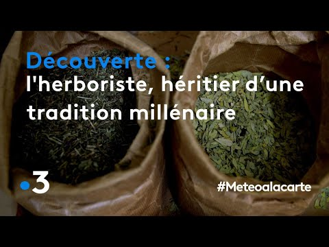 Formation  « Herboristerie »