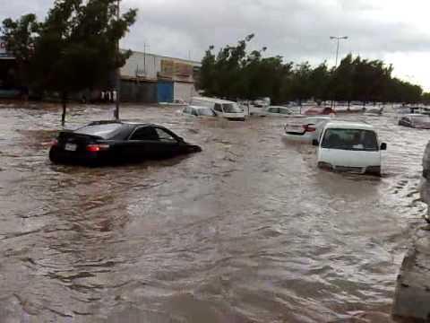 حتى السيارات صارت تسبح
