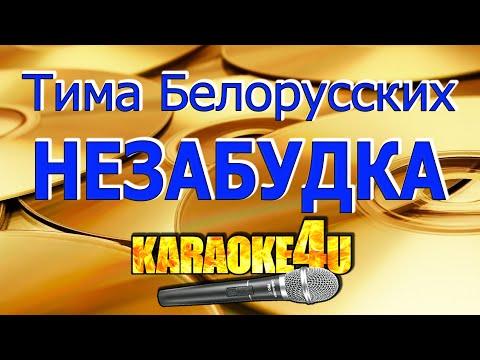 Тима Белорусских   Незабудка   Караоке (Кавер минус от RomanSam)