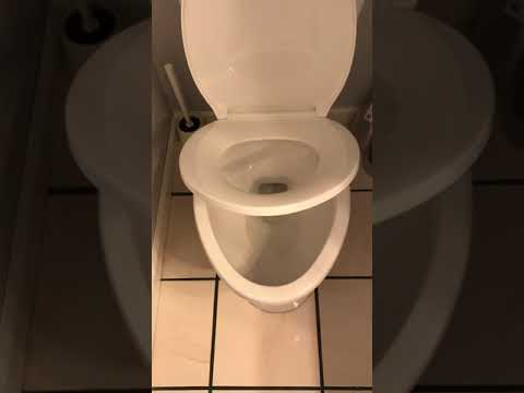 Glacier Bay Elongated Slow Closed Front Toilet Seat with Quick ...